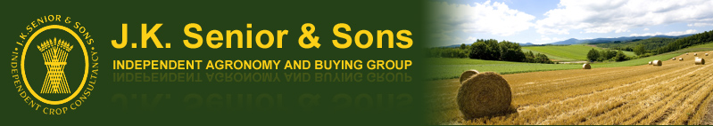 JK Senior and sons image